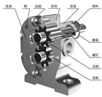 泊泵机电教您正确拆卸齿轮油泵的步骤