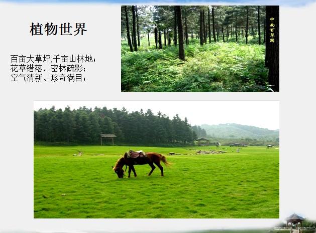 安吉百草原