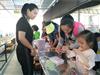 班级去松山湖亲子活动游玩推荐松湖生态园手工DIY活动