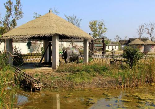 国内生态园项目主要有四大类。