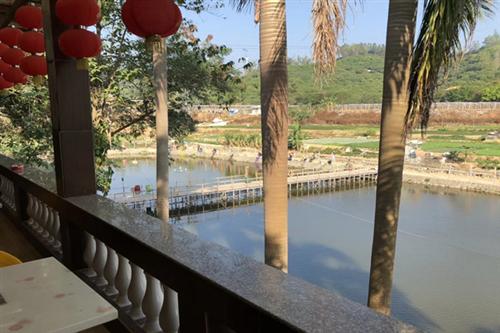 欢迎来到深圳湖尔美农场网站!