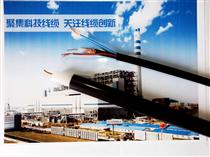 国标ZR-HYAT阻燃通信电缆