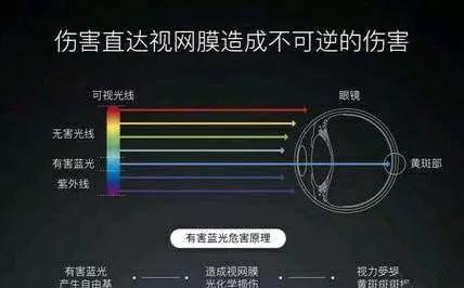 LCD、LED和OLED屏相比,哪种更伤眼睛?