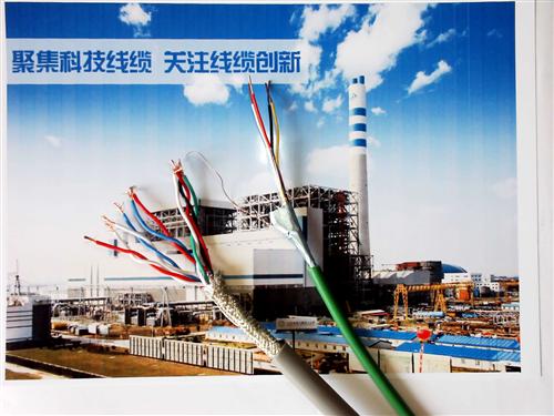 HYAT53-300×2×0.4㎜铠装填充式通讯电缆