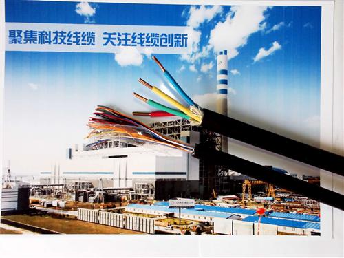屏蔽通信电缆HYAP-10×2×0.4㎜