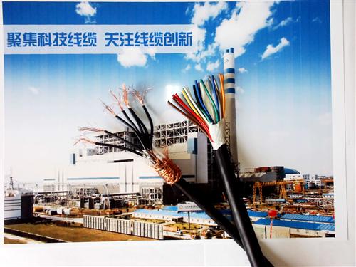屏蔽通信电缆HYAP-10×2×0.7㎜