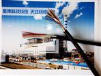 HYAC自承式通信电缆-10*2*0.6