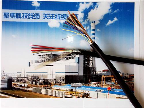 50对阻燃通信电缆ZR-HYAC