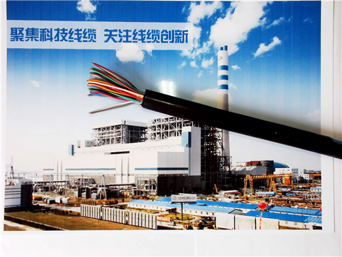 WDZ-KVVP阻燃控制电缆