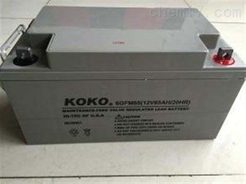 可可KOKO蓄电池容量降低