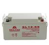 SEALEAD蓄电池发展趋势