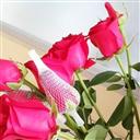 玫瑰花网套的优点