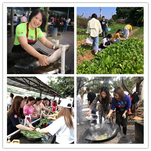 深圳农家乐推荐宝安周边充满乡村农趣的柴火野炊及公司团建派对活动