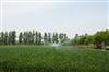广东肇庆农田灌溉水质乐虎国际游戏