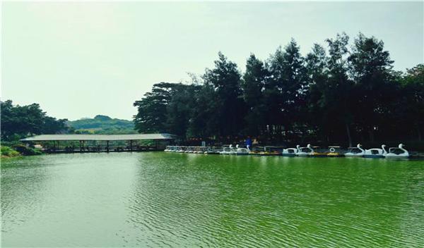 东莞附近好玩的旅游景点(周末市民休闲游玩好去处)