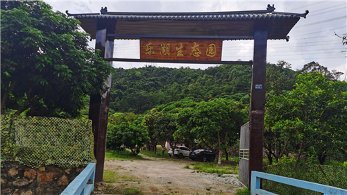 国庆出游好时节任性畅玩深圳农家乐野炊团建活动就来乐湖生态园