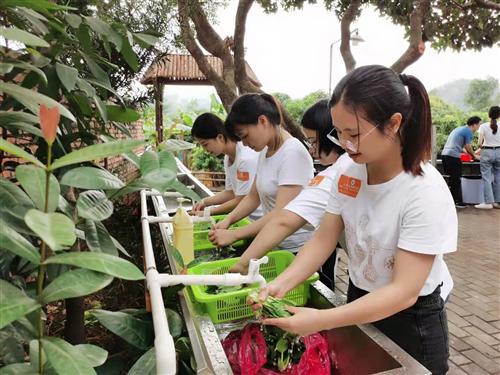 深圳农家乐一日游推荐乐水山庄适合公司团建放飞心情的生态基地