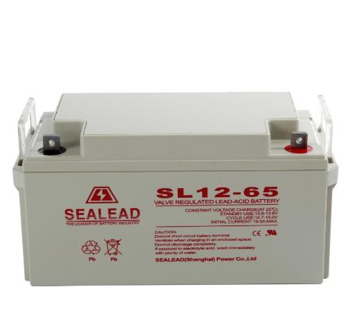 SEALEAD蓄电池维护说明