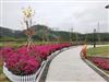 深圳农家乐人均138元消费包含哪些项目?