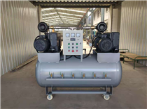 真空泵系统(德国莱宝 普旭 贝克)