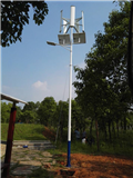 Wind Solar LED light