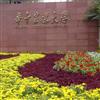 华中农业大学国家重点实验室盆栽app