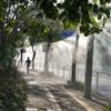 外国语学校道路除尘(APP自动定时)