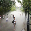湿地公园人造雾工程案例