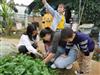深圳农家乐一日游比较好玩的野炊场地乐水山庄