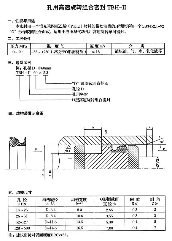TBH-II 孔用H型旋转组合密封