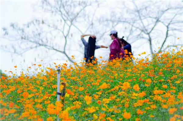 东莞最好玩的农家乐推荐松湖生态园