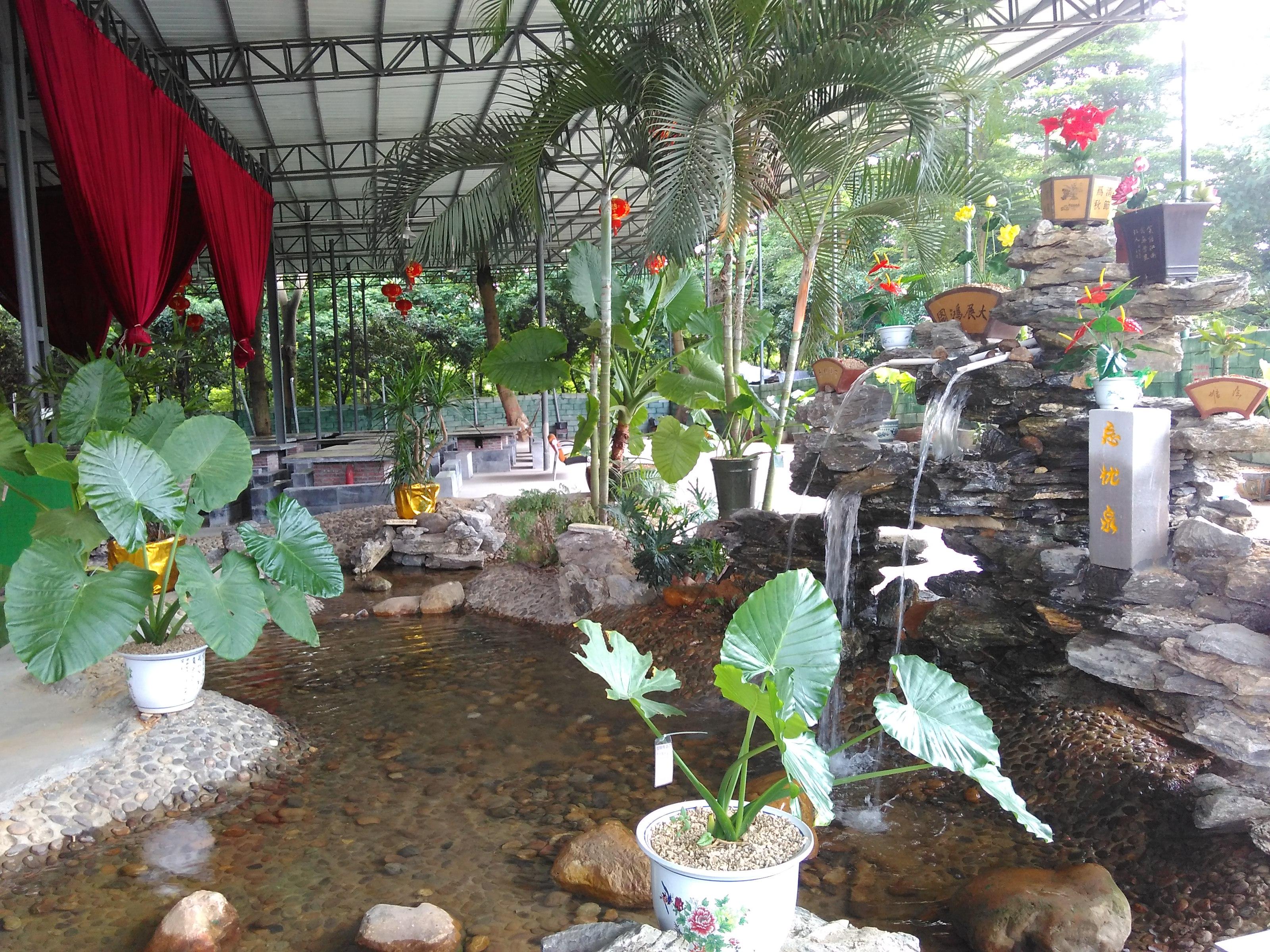 東莞松山湖農家樂旅游最佳推薦松湖生態園