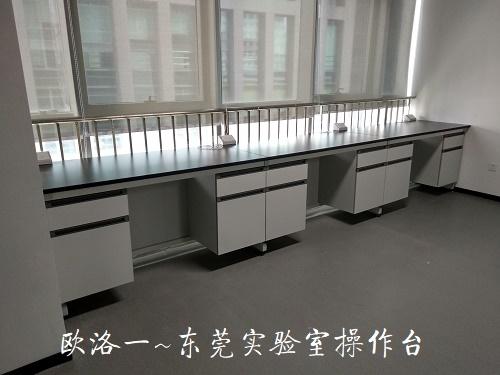 东莞实验室操作台2
