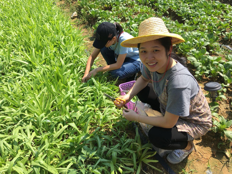 松山湖绿野生态园客人采摘自种蔬菜露出开心的笑容