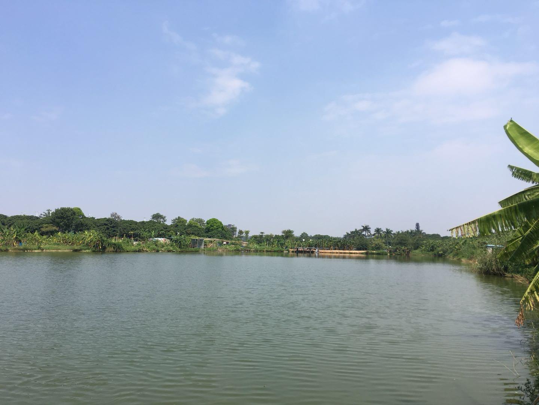 松山湖烧烤绿野生态园园区环境
