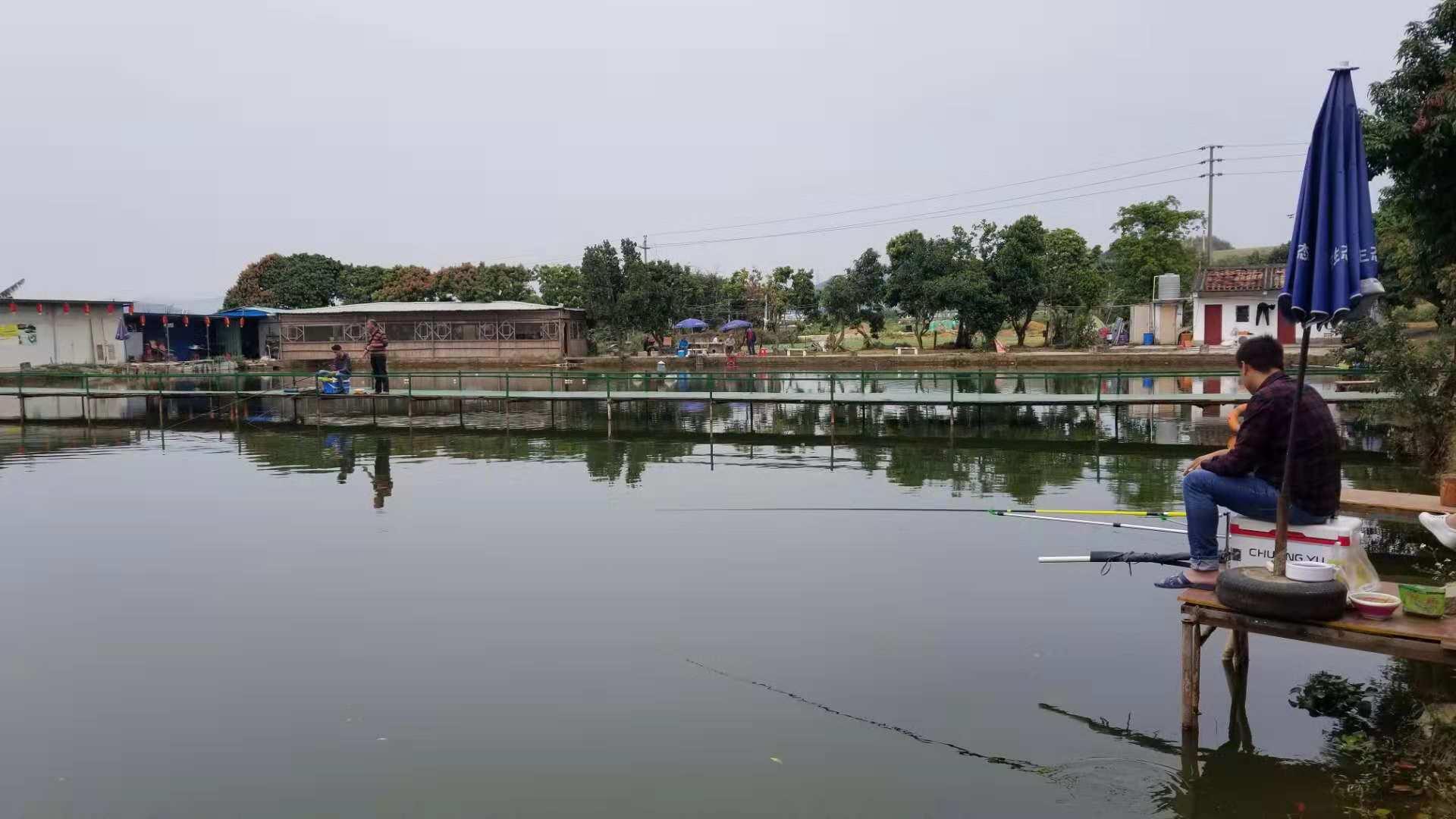 深圳乐湖生态园游客在体验农家乐钓鱼