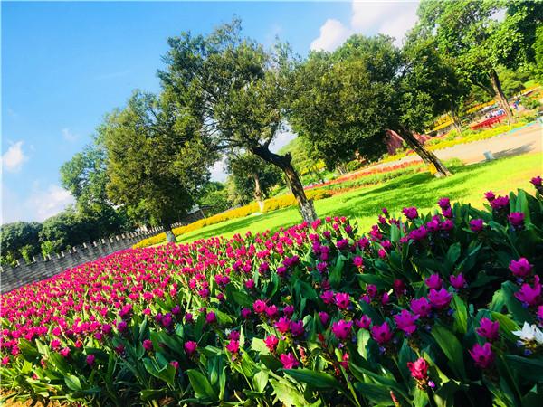 松山湖松湖生态园团建活动最佳选择