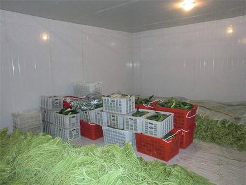 深圳蔬菜水果冷库安装中可能出现的问题