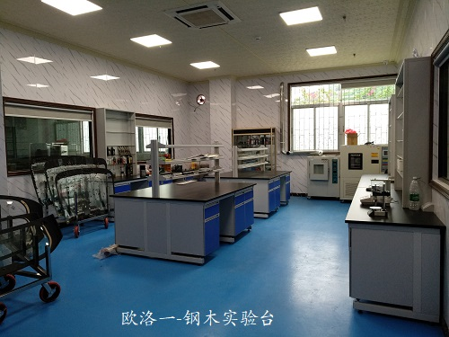 钢木实验台柜5