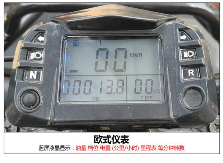 250CC四驅越野沙灘車14