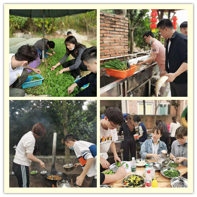 乐水山庄摘菜野炊做饭