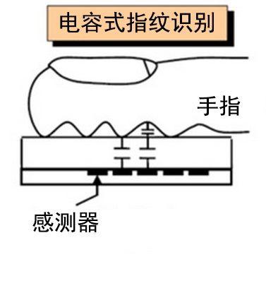 电容指纹模块