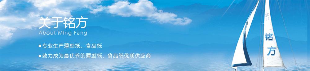 企业介绍Banner1