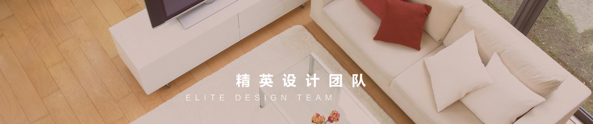精英设计团队