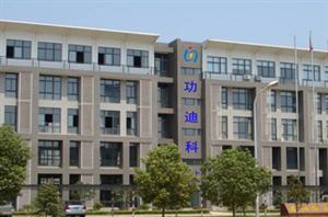 武汉功迪科技有限公司建立于2009年