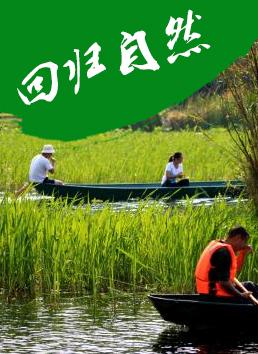 东莞松山湖农家乐旅游首选绿野生态园