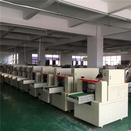 HEADLY Pillow Packaging Machine