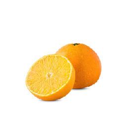 四川果冻橙