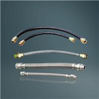eNG系列防爆挠性连接管(eⅡ)