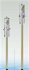 RAASM62041气动油脂泵 飞鹰上海分公司